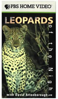 NOVA : Leopards of the Night