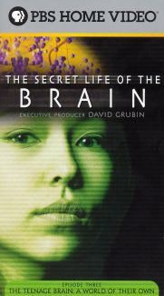 The Secret Life of the Brain : The Teenage Brain: A World of Their Own