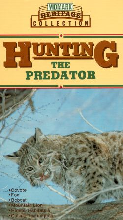 Hunting the Predator