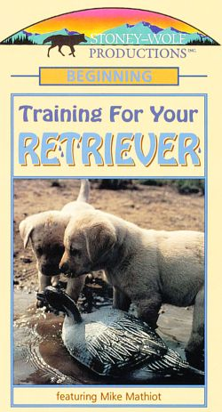 Training Your Retriever: Basic