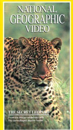 National Geographic: Secret Leopard