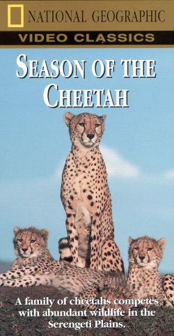 National Geographic: Season of the Cheetah