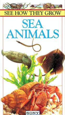See How They Grow: Sea Animals (1996) - | Synopsis ...