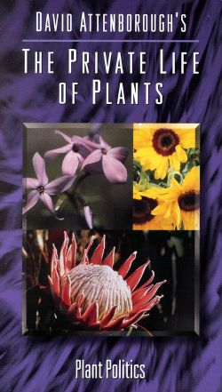 David Attenborough's The Private Life of Plants: Plant Politics (1995)