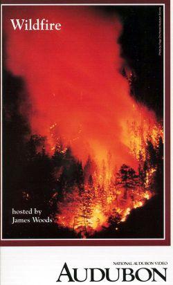 Audubon Video: Wildfire