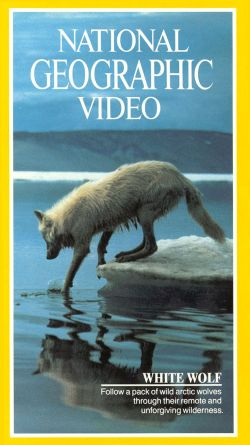 National Geographic: White Wolf