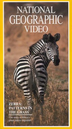 National Geographic: Zebra - Patterns in the Grass