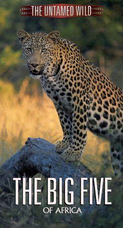 Untamed Wild: The Big Five of Africa