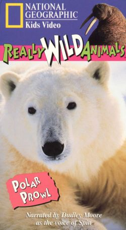 national geographic really wild animals polar prowl 1997