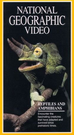 National Geographic: Reptiles and Amphibians