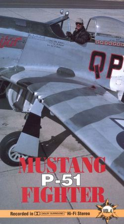 Roaring Glory Warbirds: Mustang P-51 Fighter