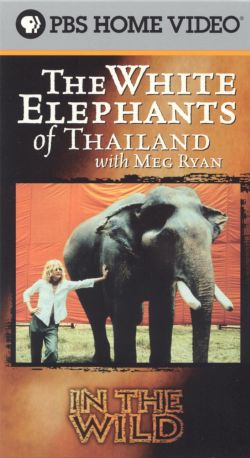 In the Wild: The White Elephants of Thailand with Meg Ryan