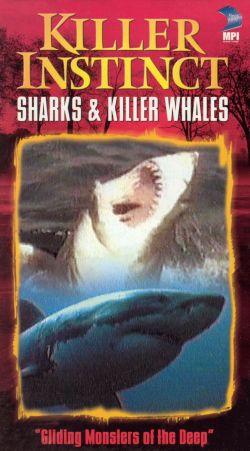 Killer Instinct: Sharks and Killer Whales