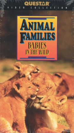Animal Families: Babies in the Wild