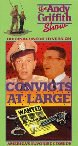 The Andy Griffith Show : Convicts at Large
