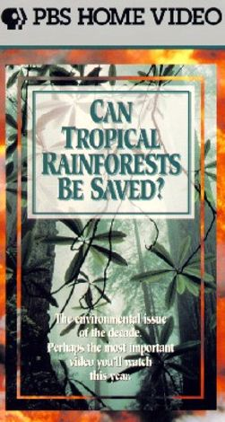 Can Tropical Rainforests Be Saved?