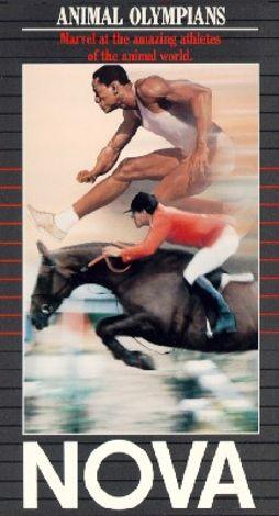NOVA : Animal Olympians