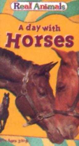Real Animals: A Day with Horses