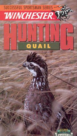 Hunting Quail