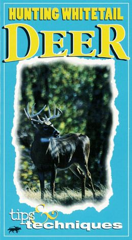 Hunting Whitetail Deer