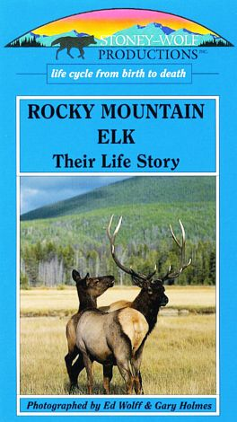 Rocky Mountain Elk: Their Life Story