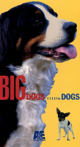 Big Dogs, Little Dogs