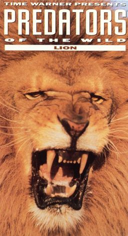 Predators of the Wild: Lion