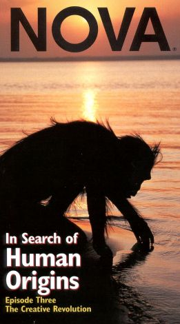 NOVA : In Search of Human Origins