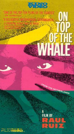Het Dak Van De Walvis