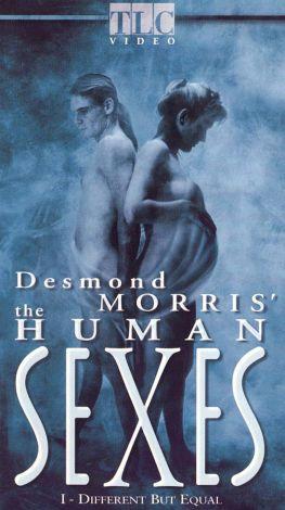 The Human Sexes