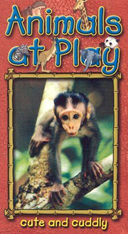 Animals at Play, Vol. 3