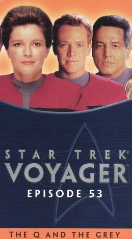 Star Trek: Voyager : The Q and the Grey