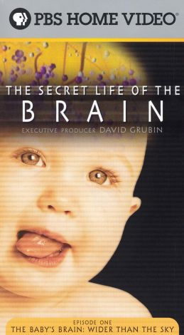 The Secret Life of the Brain : The Baby's Brain: Wider than the Sky