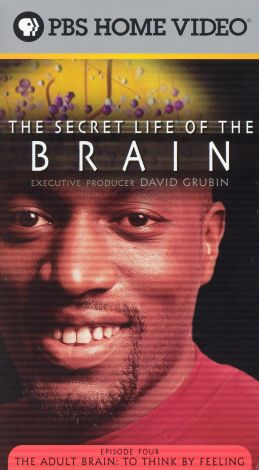 The Secret Life of the Brain : The Adult Brain: To Think by Feeling