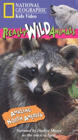 Really Wild Animals : Amazing North America