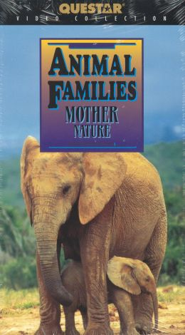 Animal Families: Mother Nature