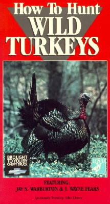 How to Hunt Wild Turkeys