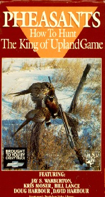 Pheasants: How to Hunt the King of Upland Game