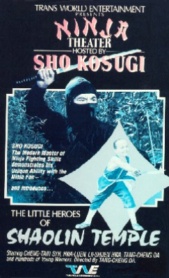 Little Heroes of Shaolin Temple