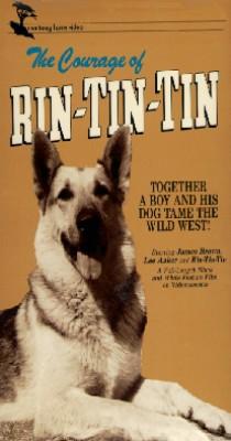 The Courage of Rin Tin Tin
