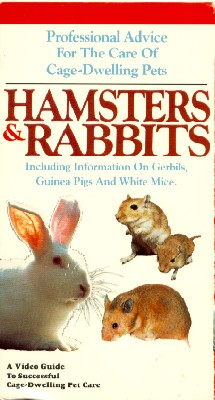 Hamsters and Rabbits