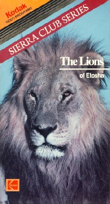 Sierra Club Series: Lions of Etosha