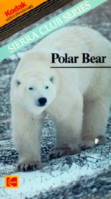 Sierra Club Series: Polar Bear