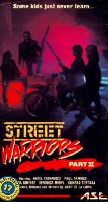 Street Warriors 2