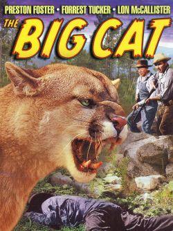 The Big Cat