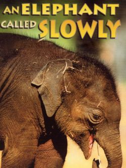 An Elephant Called Slowly