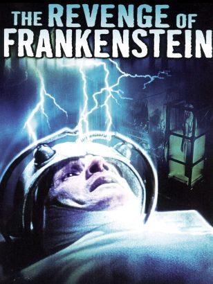 "The theme of revenge reflected in ""Frankenstein"" by Mary Shelley (Blog #2)"