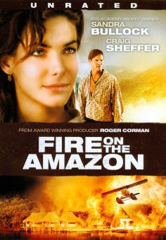 Fire on the Amazon