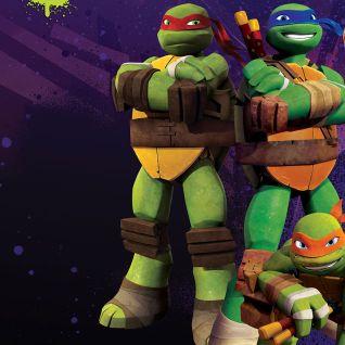 Teenage Mutant Ninja Turtles [Animated TV Series]