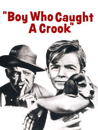 The Boy Who Caught a Crook